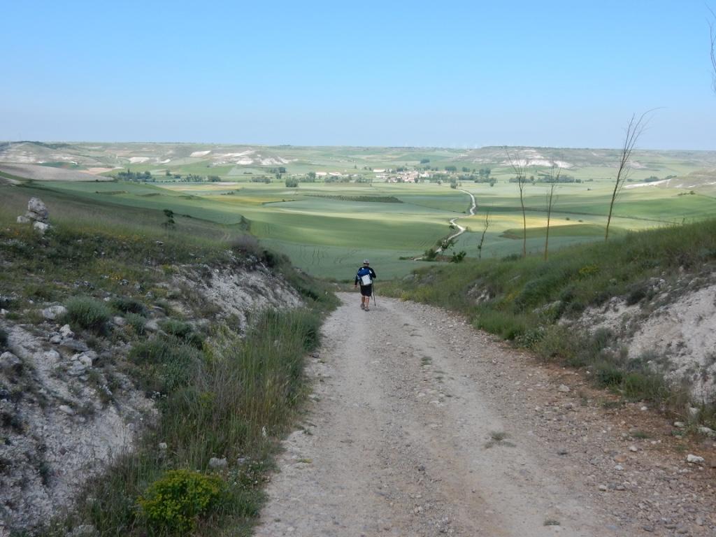 Camino Frances dans la Mezetas