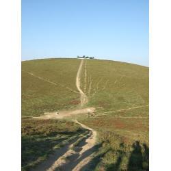 Chemin sur la colline